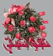 الحكو ع ميلاد الحلو عاشق القوشية ؟؟ 283371